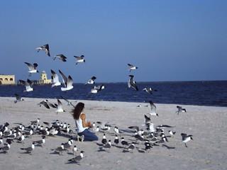 Biloxi Ms Beach House Rentals Near Casinos And Allows Pets