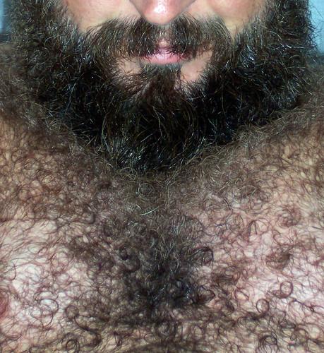 Hairy men bear