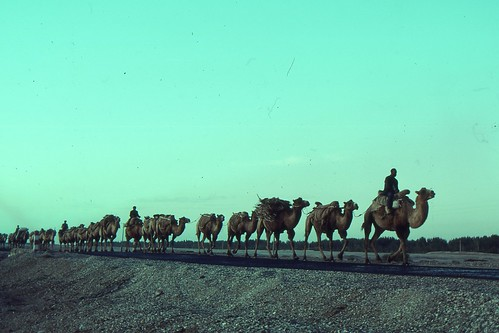 Silk Road 1992 | by fdecomite