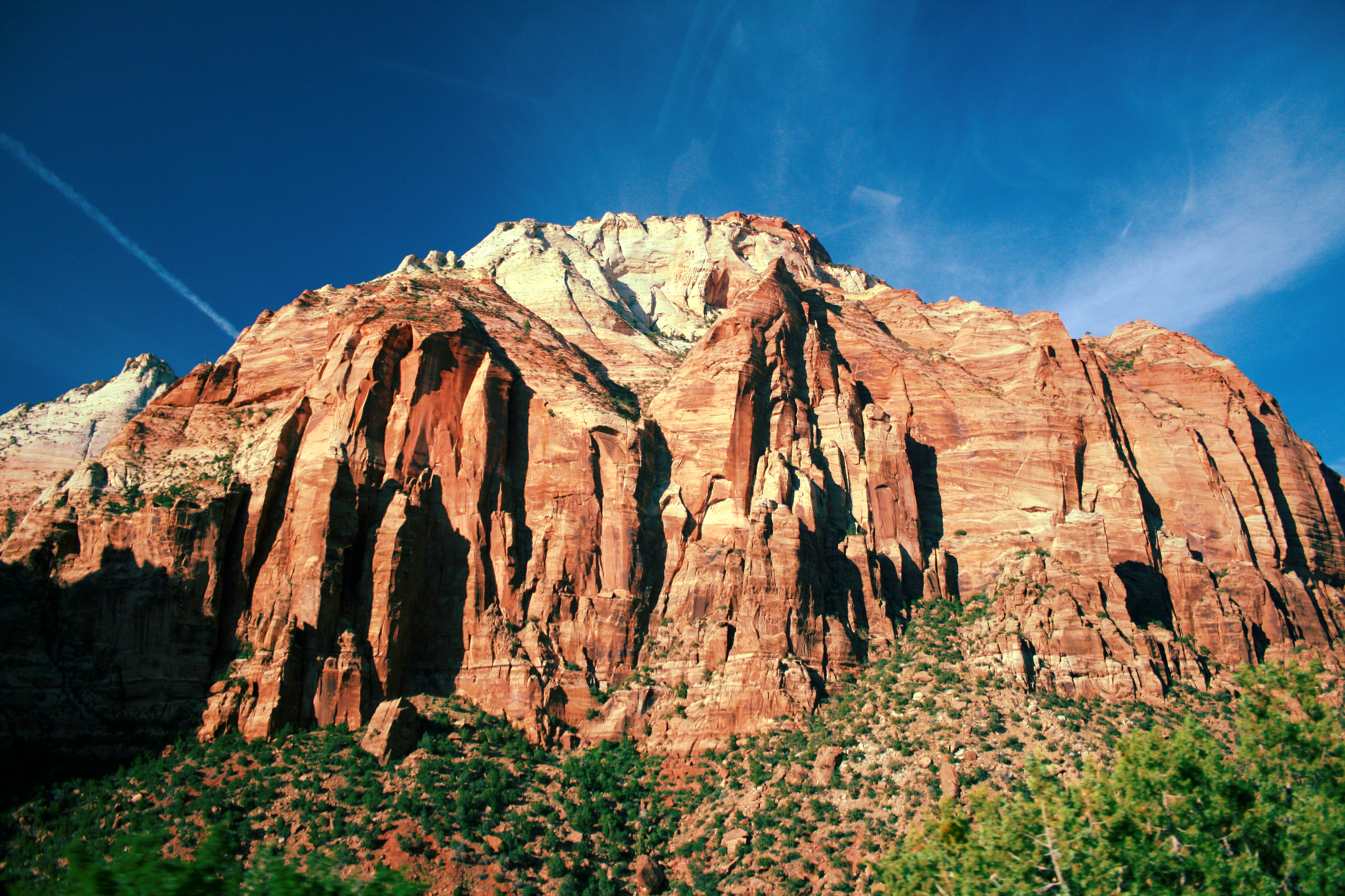 Red rocks of zion