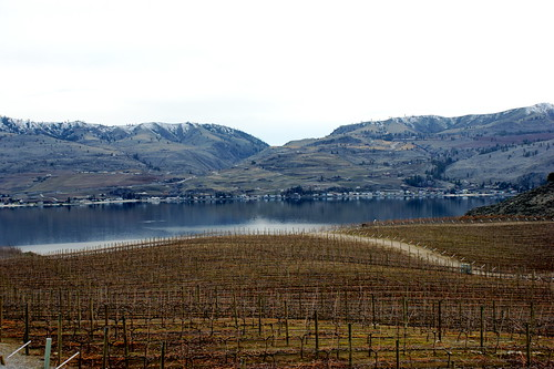 View from Benson Winery | by ae
