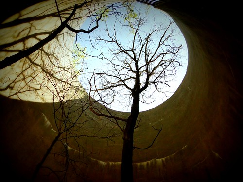 The tree in the silo | by Ken Wolf