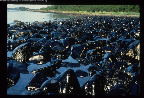 Exxon Valdez Oil Spill - 0038 | by ARLIS Reference