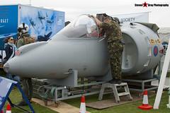 Harrier GR7 Nose - Duxford - 100905 - Steven Gray - IMG_6223