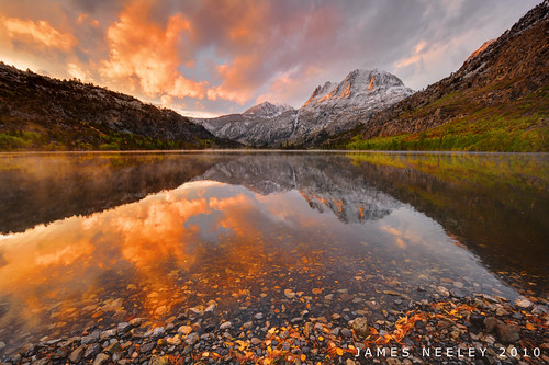 Color Flash | by James Neeley
