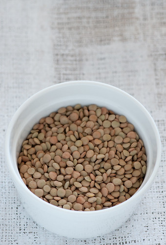 brown lentils | by jules:stonesoup