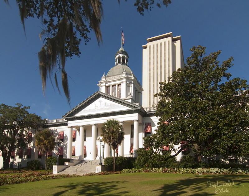 Historic Capital Building - Tallahassee, FL - 2010