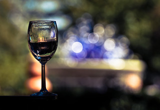 Wine Glass in the Park | by mjkjr