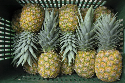 Fresh pineapples at Bomart Farms | by World Bank Photo Collection