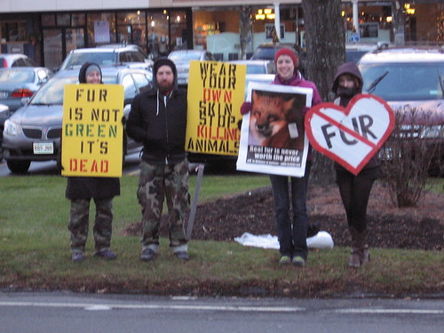 Fur Free Friday 11.16.10 | by adkanimalrights