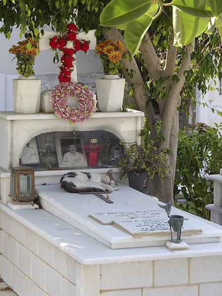 le chat qui dort sur la tombe