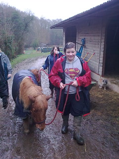 Helping South Hants Pony & Horse Protection Group | by Solent Youth Action