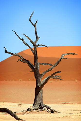 Namibia | by Dietmar Temps
