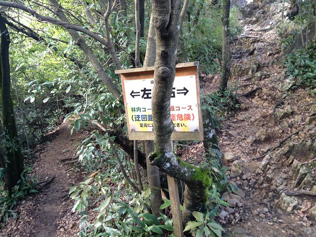 金華山 東坂登山道 尾根コース分岐