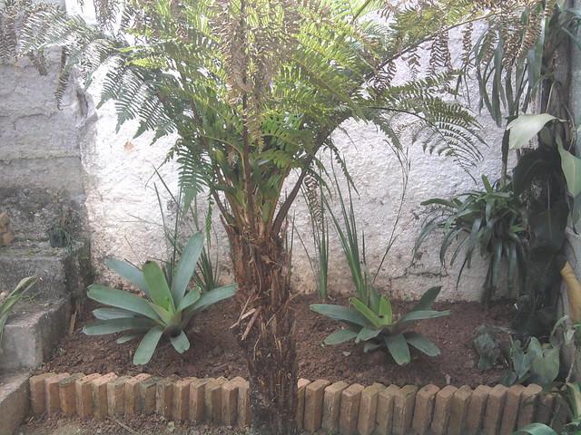 Jardim do Centro de Artes ProBrasil