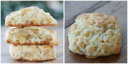 Meyer Lemon Ginger Scones Collage 2 | by Food Librarian