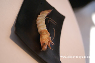 Boiled Shrimp at El Bulli Restaurant Menu (32) | by yumcat