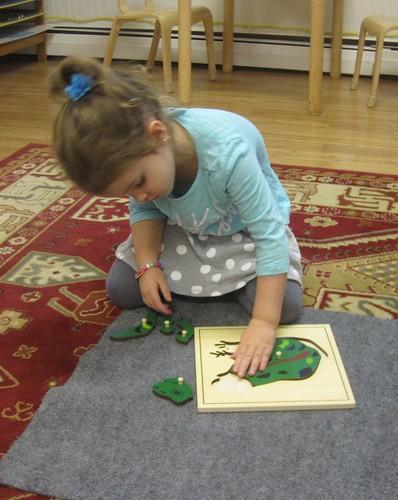 frog parts puzzle