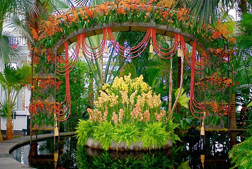 New York Botanical Garden 39 S Orchid Show On Broadway Walter Kerr Theater Inspired Orchid