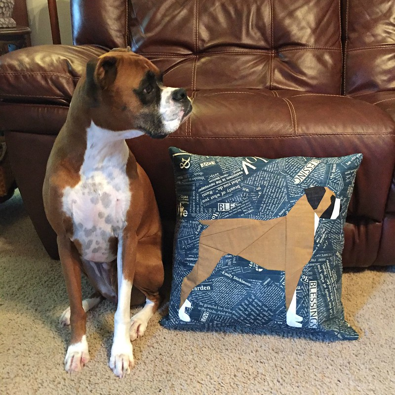 Paper pieced boxer pillow with Polly Grace :)