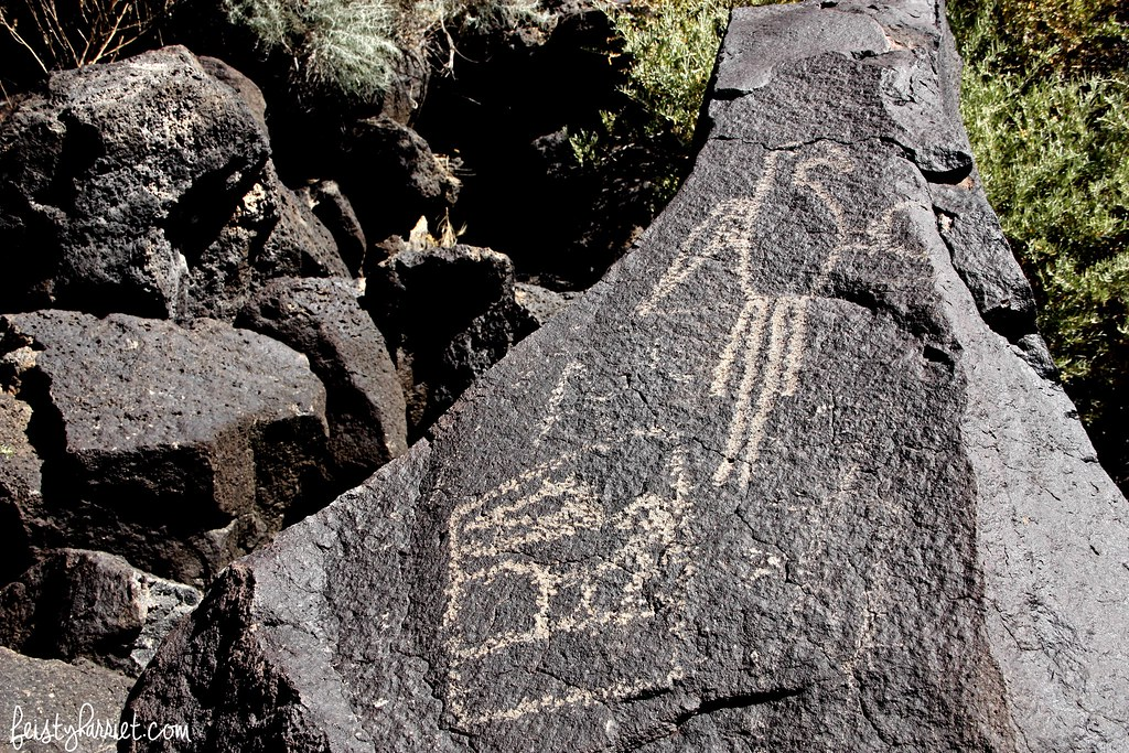 Petroglyphs National Monument_feistyharriet_2016 (2)