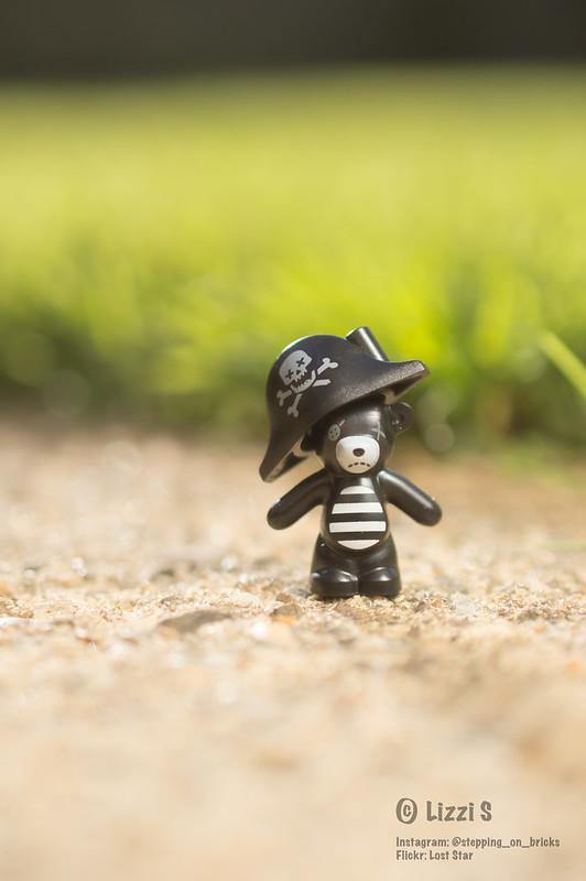Pirate teddy (276:366)