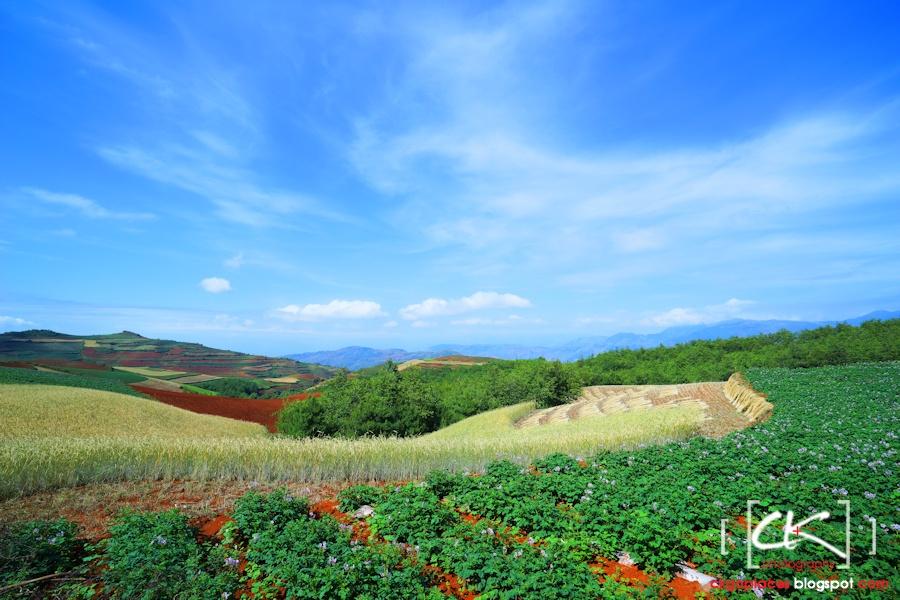 Yunnan_0047