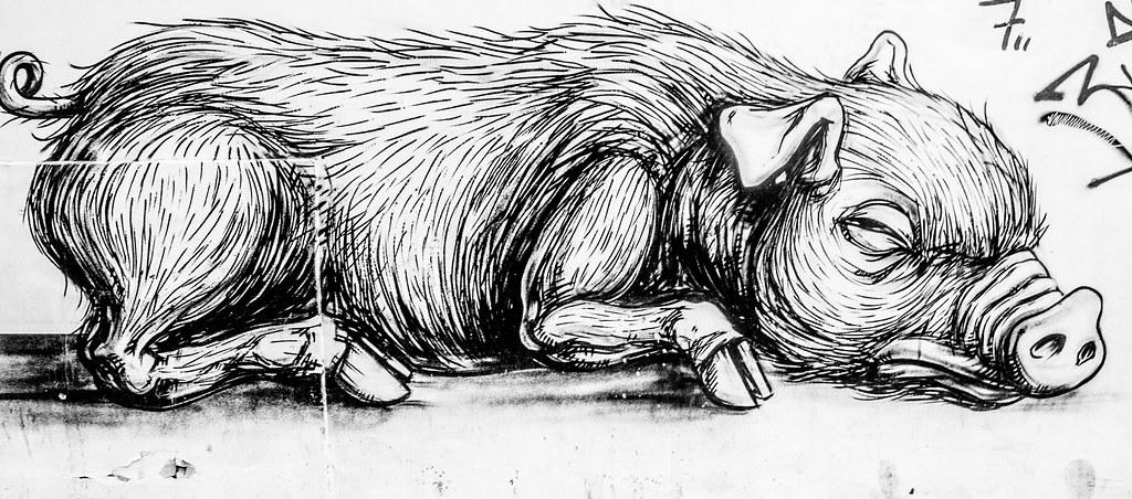 LAZY PIGS by ROA [STREET ART IN BRUSSELS]-123721