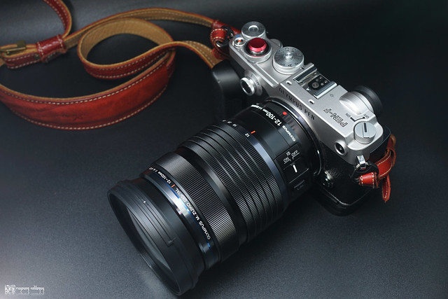 Olympus M.ZD 12-100mm F4 IS PRO | 05