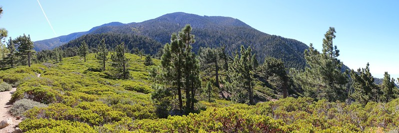 Panorama view south over Mazanita Flat toward San Bernardino Peak