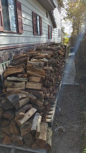 Dog Run Wood Pile