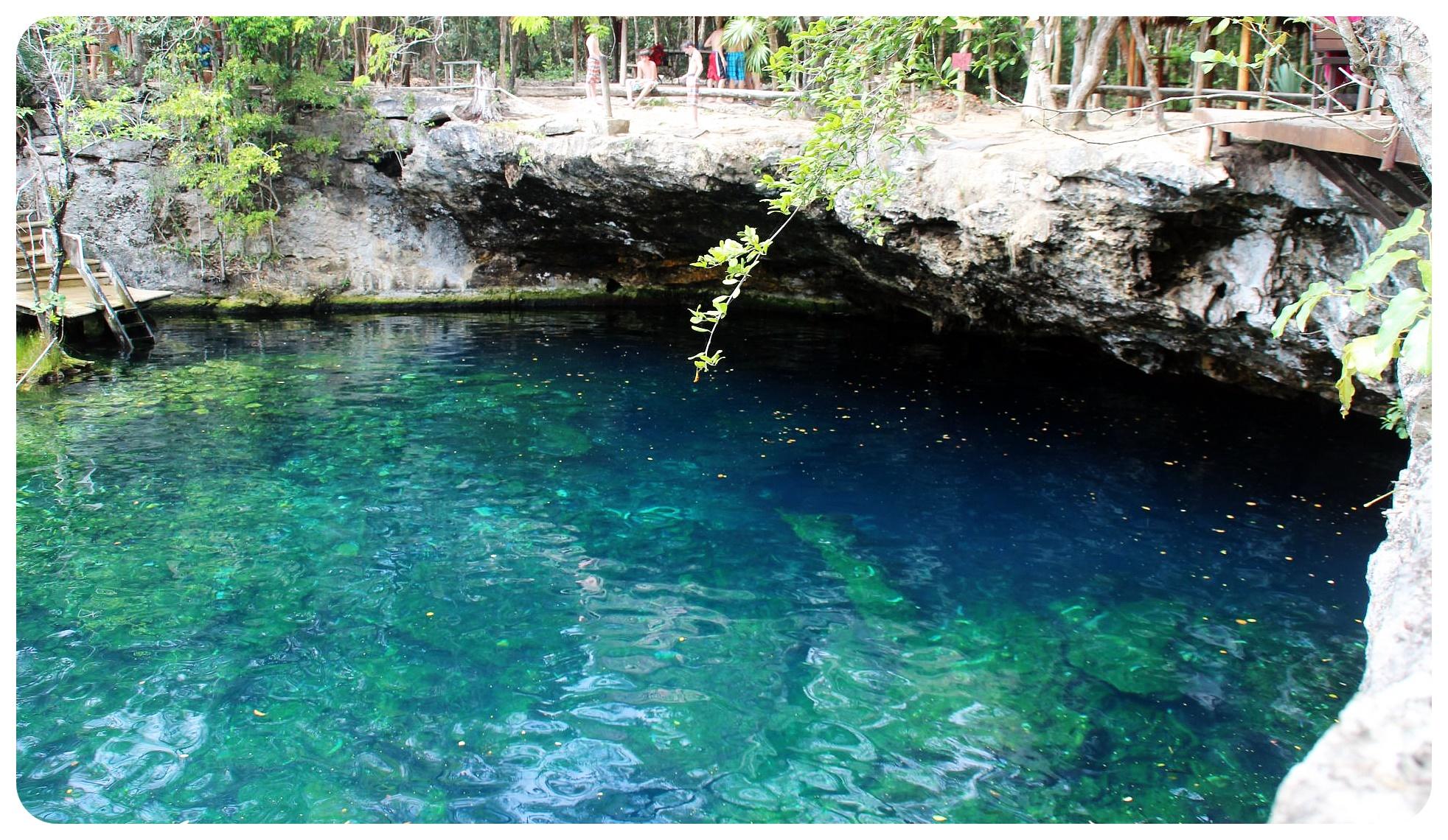 cenote jardin del eden yucatan