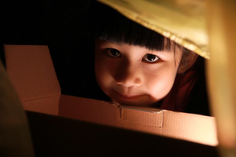 練習筆記(六):閃燈放在小幸福下巴前方的小紙箱裡,燈頭朝上,出力 -2EV左右。