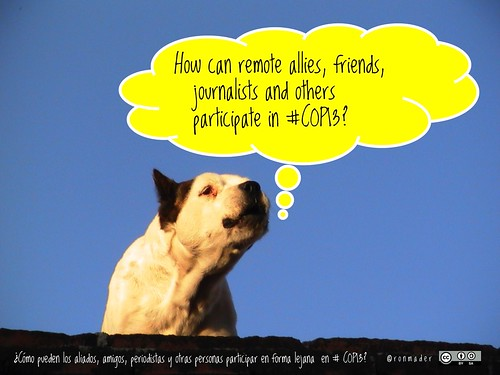 How can remote allies, friends, journalists and others participate in #COP13? #RoofDog @RioPavilion @IUCN @IUCN_CEC @CBDNews @COP13MX
