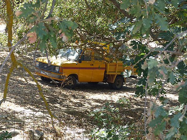 camionette jaune