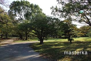 福岡城公園
