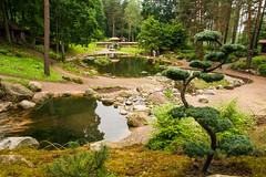 Ботанический Сад. Japoniškas sodas