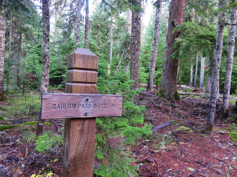 Trail sign for Barlow Pass