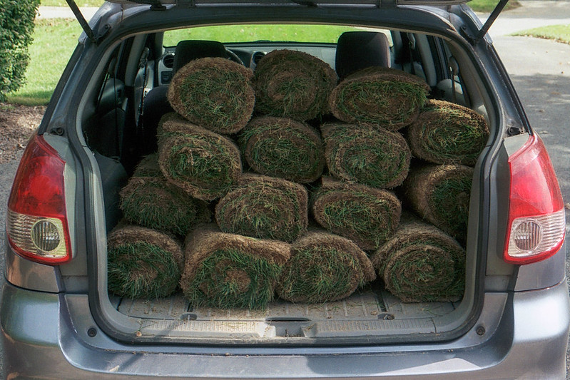 Wagon Full of Sod