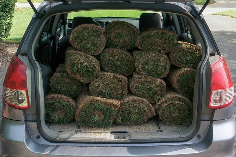Wagon Full of Sod