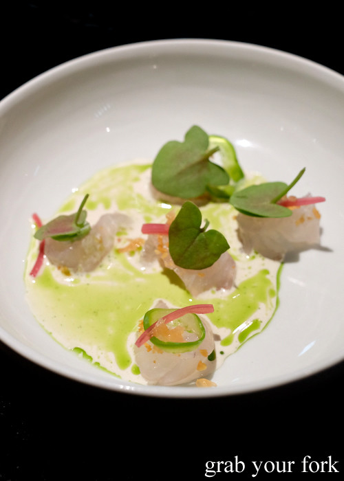Snapper ceviche at Momofuku Seiobo at the Star in Sydney