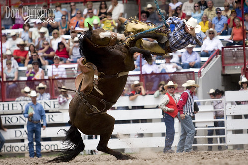 Saddle Bronc Cowboy | by dtcchc