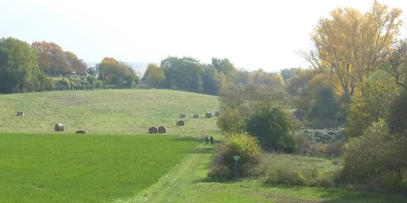 Selztal zwischen Schwabenheim und Elsheim