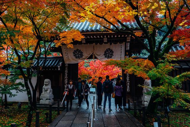 Kyoto_Eikando_25