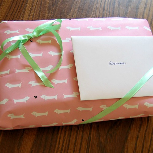Vitamini Dachshund Gift Wrap