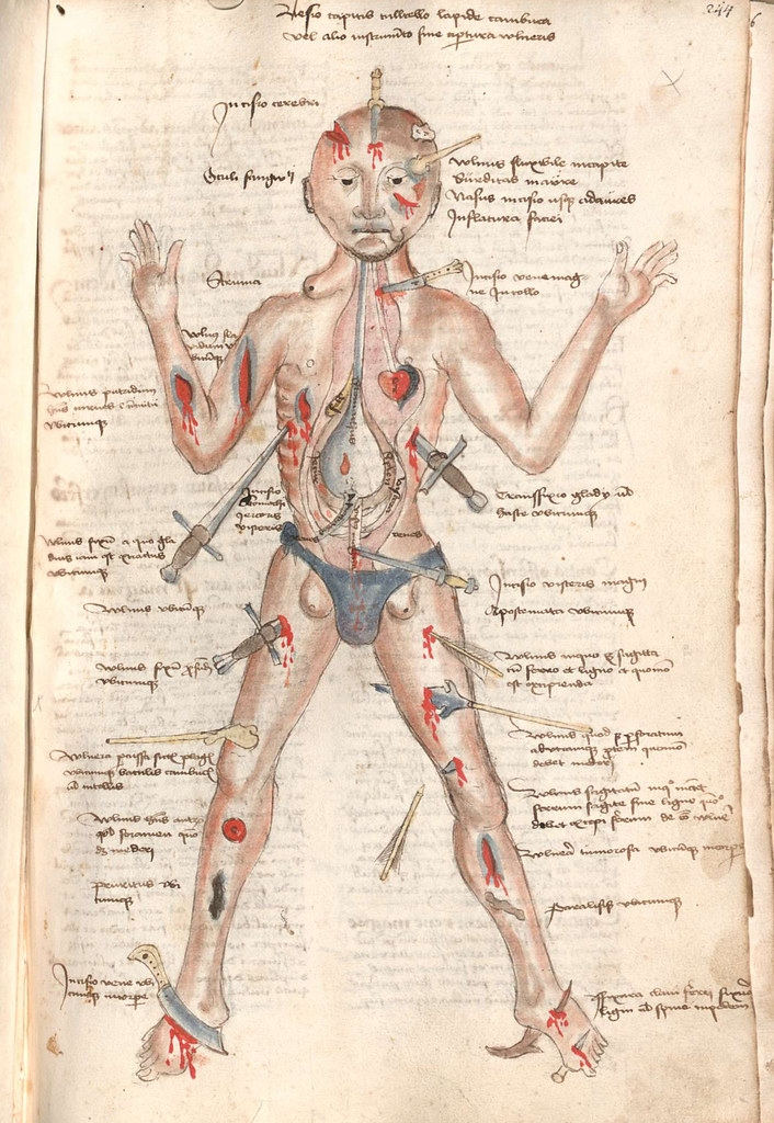 The Many Lives Of The Medieval Wound Man The Public Domain Review