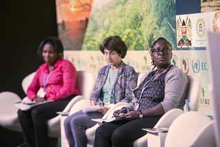 COP22 - KENYA: Linking the Paris Agreement to the NDCs: Ensuring Successful Adaptation at the National and Local levels in Kenya