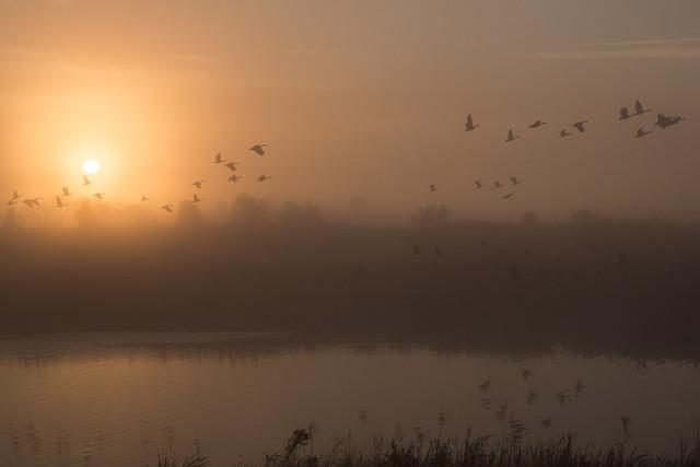 Delaware October Morning 5