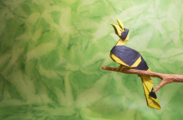 Origami Great Hornbill - Quentin Trollip