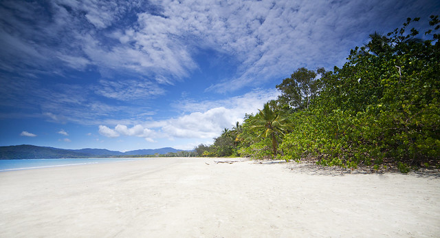 Paradise at Cape Tribulation, Tropical North Queensland